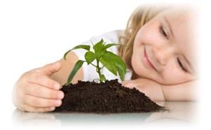 Ecological Grow